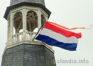 правительство в Нидерландах