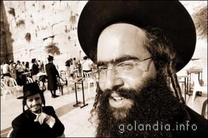 Евреи в Нидерландах