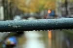 дождь нидерланды