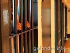 Свобода в тюрьме Голландии