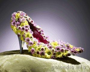 В Нидерландах собрали одежду и обувь из цветов