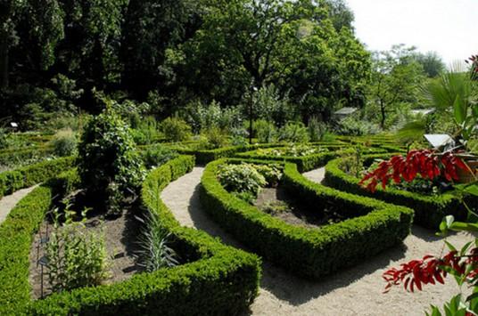 Ботанический сад в Амстердаме